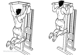 machine_assisted_pull-ups_pullups